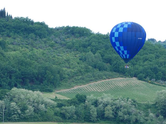 mongolfiera vola su colline alberate