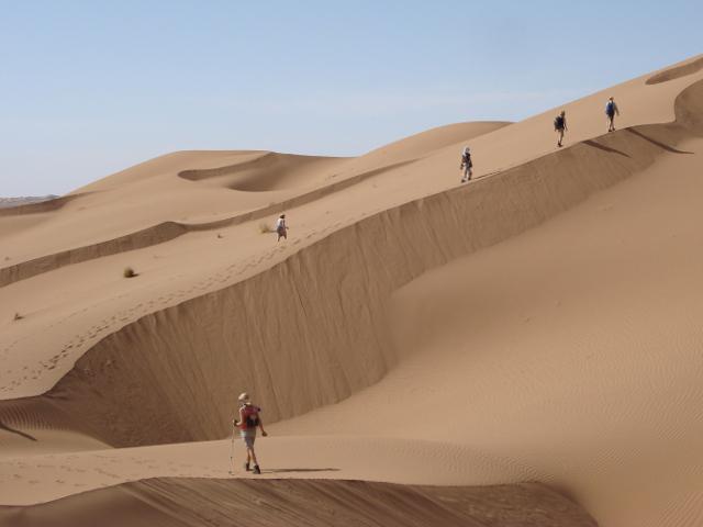 Cinque partecipanti in cammino sulla cresta di una duna