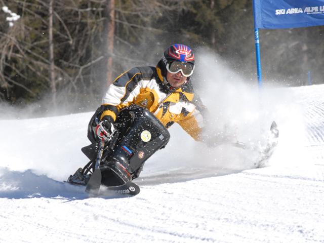 sciatore su un monosci fa lo slalom