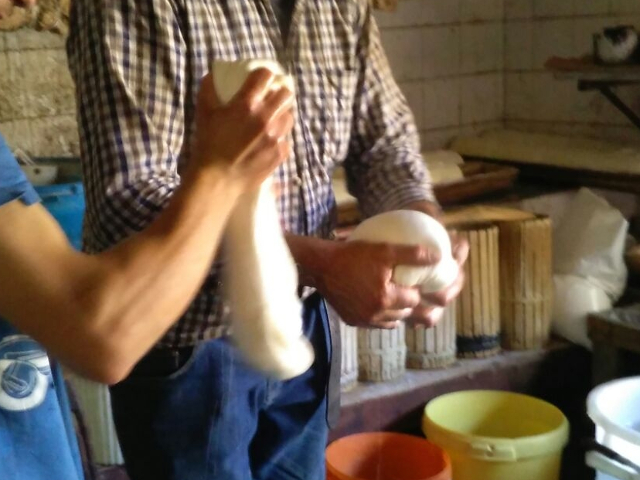 I pastori filano il formaggio