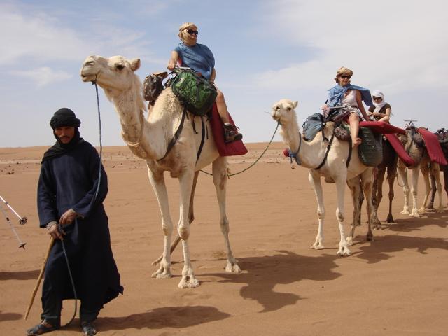 Due partecipanti a dorso di cammello condotti da una guida del posto