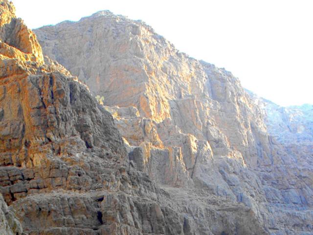 Primo piano di una parete rocciosa