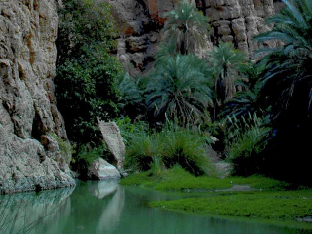 Fiume che scorre ai piedi di una parete rocciosa tra palme verdeggianti