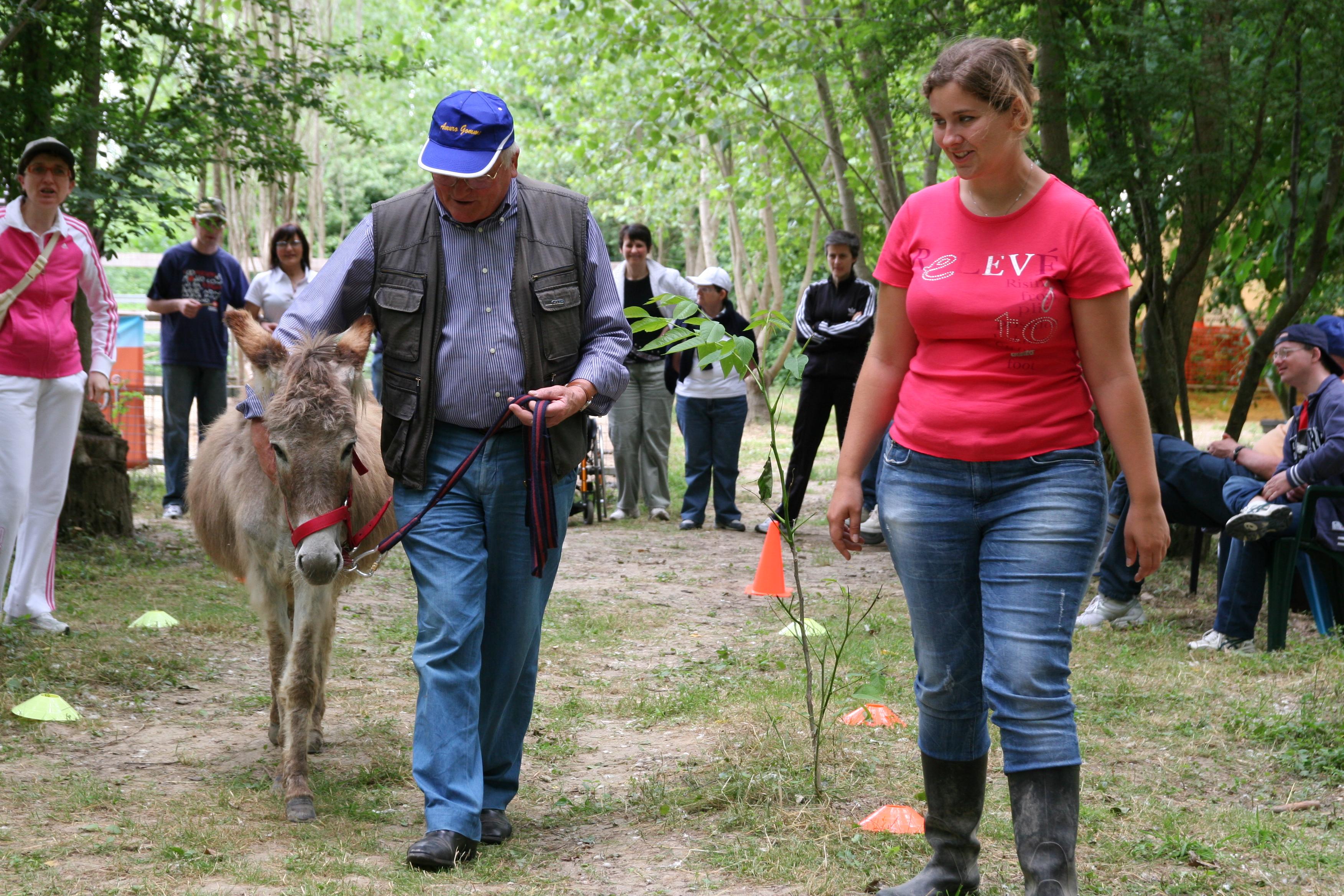 Un uomo passeggia con un asinello sotto lo sguardo di numerosi visitatori