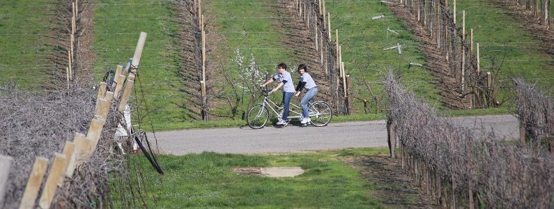 Guida e persona non vedente in tandem tra le campagne del veronese