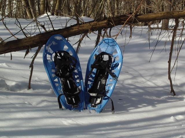 Ciaspole appoggiate sulla neve