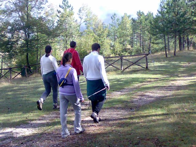 camminatori con le racchette camminano in un bosco