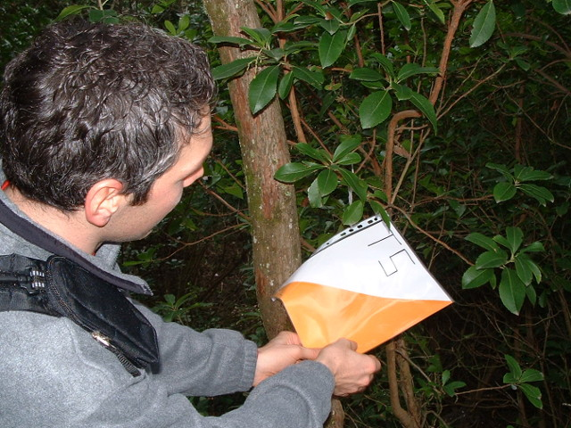 persona trova tappa di orientirign nel bosco