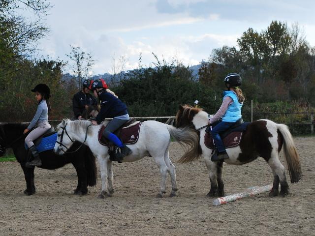 Piccoli allievi sui pony durante una lezione