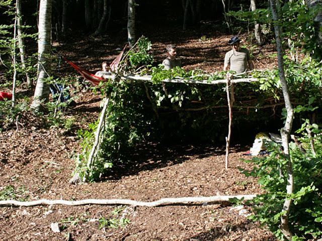 Rifugio rami e tronchi