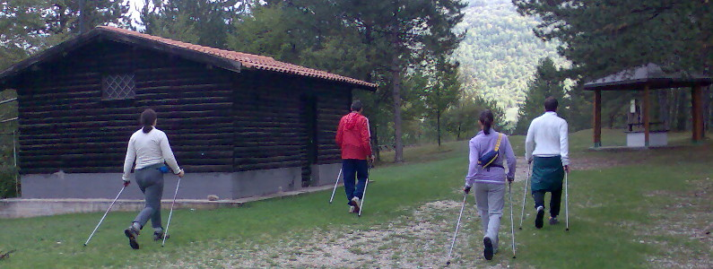 quattro camminatori con i bastoni da nordic walking