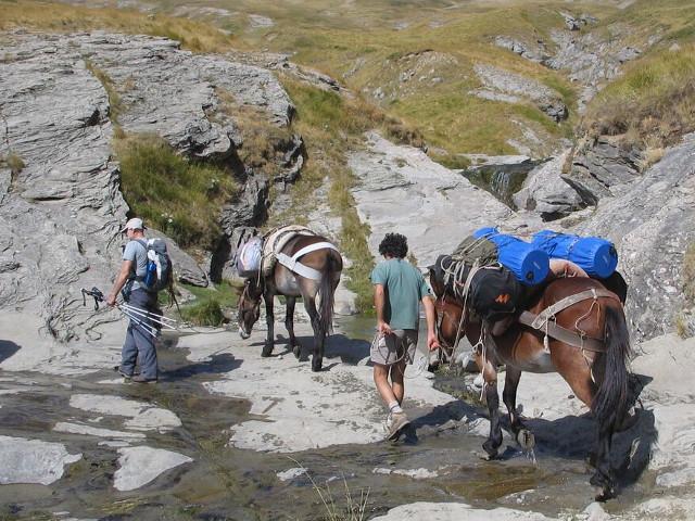 Escursionisti e asini su una strada rocciosa