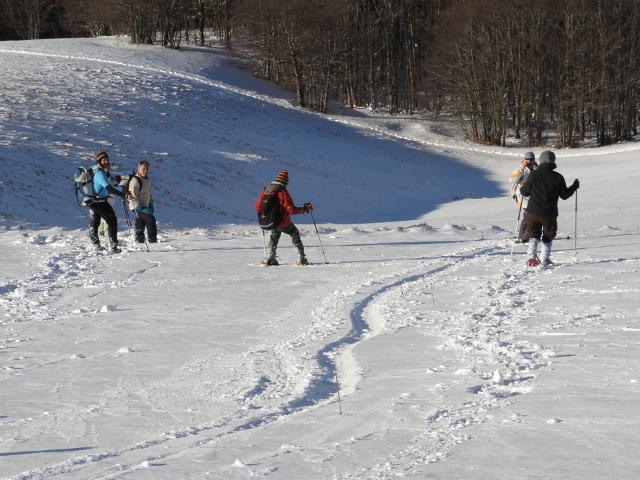 Escursionisti percorrono una discesa con ciaspole e racchette