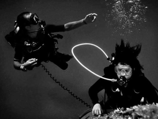 Immagine in bianco e nero di un immersione