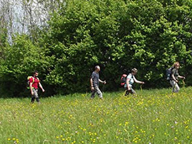 Carovana di escursionisti attraversa una radura verdissima
