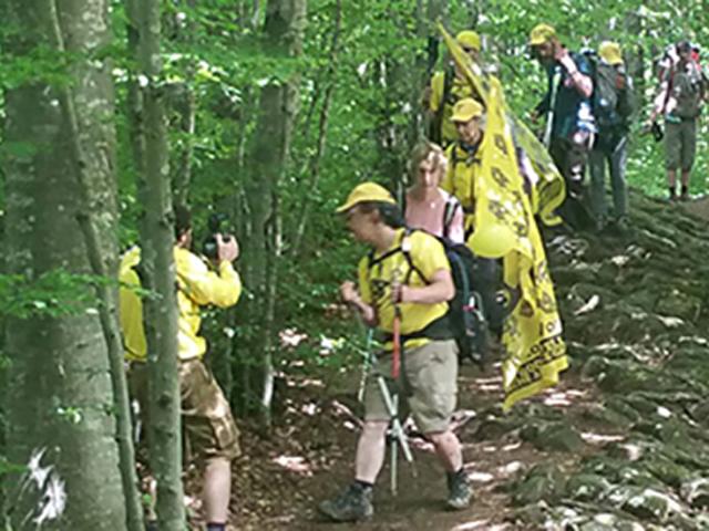 Gruppo di escursionisti su un sentiero tra gli alberi