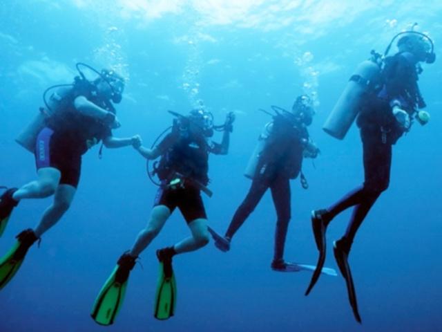 Gruppo di sub in immersione