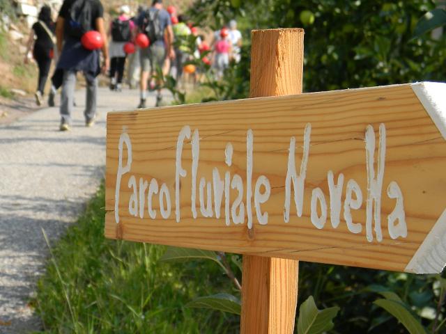 Nel Parco Fluviale Novella potrai conoscere ambienti molto diversi tra loro. Si va dai rigogliosi meleti ai boschi lussureggianti, fino agli spettacolari canyon dove il torrente è il protagonista indiscusso