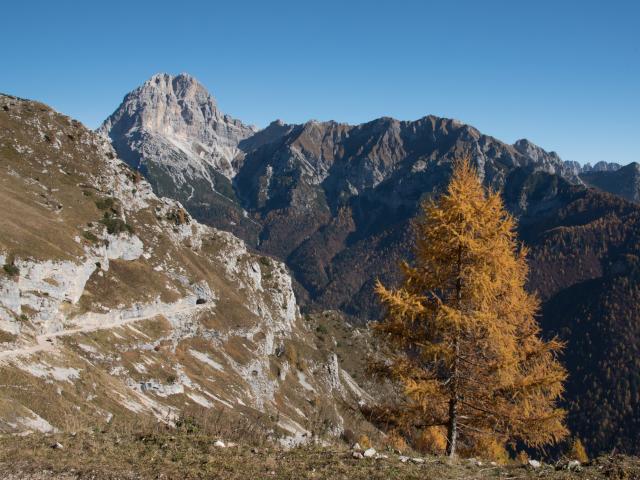 Percorso Val Zemola – Cava Buscada Dolomiti Friulane e d'Oltre Piave